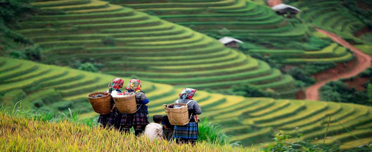 cong-troi-sapa-2021-duong-len-tien-canh