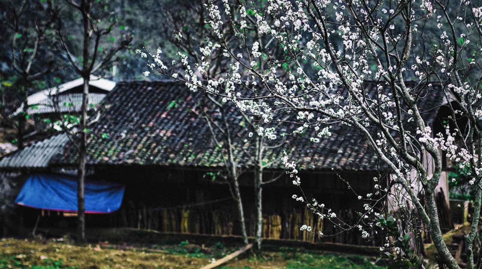 Du-lich-Ha-Giang